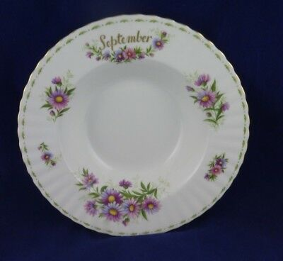 1 Royal Albert September Michaelmas  Daisy Rimmed Soup Bowl  English Bone China
