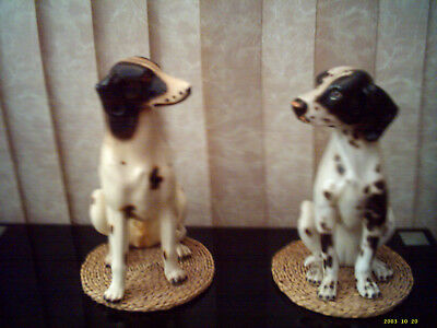 A Lovely Old Pair Of Dalmation Dogs