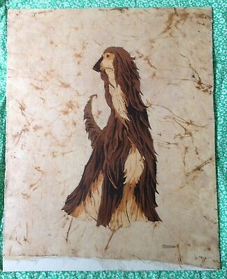 Vintage One Of A Kind CHAUNCEY Silky Coated Black And Tan Afghan Hound Dog!