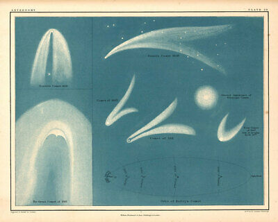 Atlas of Astronomy by Alex Keith Johnston Plate - 10. Comets 1869