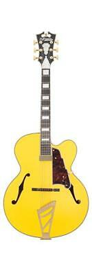 D'Angelico Deluxe EXL1 Hollow-Body Electric Guitar w/ Stairstep Tailpiece & Case