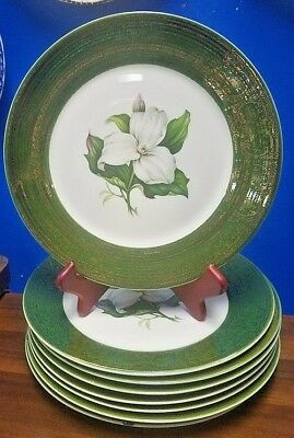 Triumph china American Limoges TRILLIUM tS28 pattern 8 DINNER PLATES see details