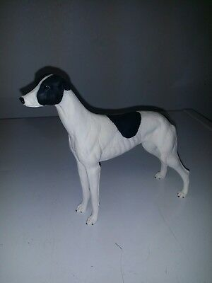 NORTH LIGHT 1983 Greyhound black And White Collectible dog