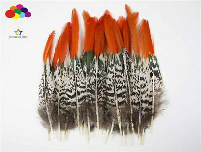 Pheasant Tail red tip Feathers 2-14 inch/5-35 cm 10-100PCS Carnival Diy costume