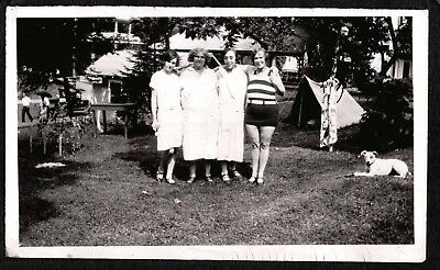 Vintage Photograph 1927-1930's Pennsylvania Girl Fox Terrier Dog Puppy Old Photo