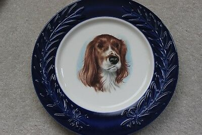 Vintage Springer Spaniel Dog Plate - 10 1/2 inches - Very Good Condition