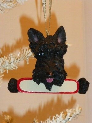 Scottish Terrier Detailed, Hand Painted Resin Ornament , Space To Personalize