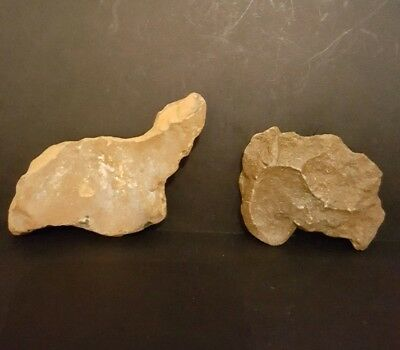 Super Upper Palaeolithic Portable Animal Rock Art Duo.