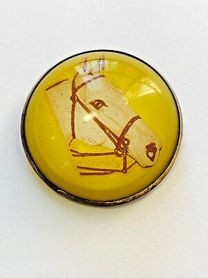 Antique VTG Horse Pin Brooch Large Round Pin Brass Back Glass Cover Jewelry Gift