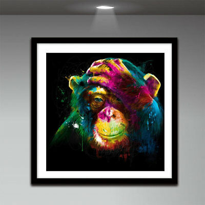 30*30CM Color Monkey Embroidery DIY Needlework Diamonds Plated 5D Painting QM /k