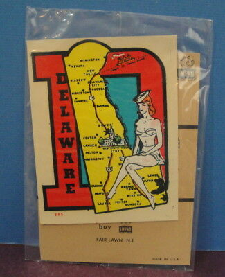 Vintage Travel State Decal Souvenir Sticker DELAWARE