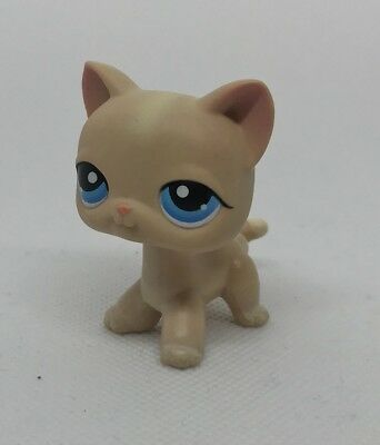 Littlest Pet Shop #228 LPS Short Haired Cat Kitty Blue Eyes Hasbro Authentic