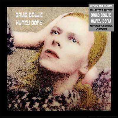 David Bowie Calendar 2019 Hunky Dory Collectors Edition Official Wall 30x 30cm