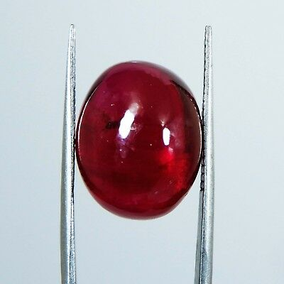 14.75 Cts Natural Burma Red Ruby GGL Certified Oval Cut Cabochon Loose Gemstone