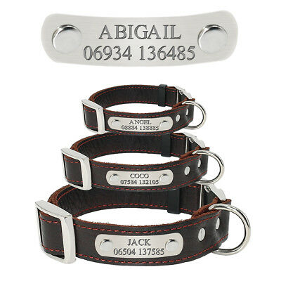 Personalized Leather Dog Collar with Name Plate Custom Buckle Engraved Pet Tag