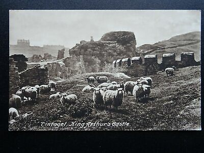 Cornwall TINTAGEL Sheep & King Arthur's Castle - Old Postcard by Frith