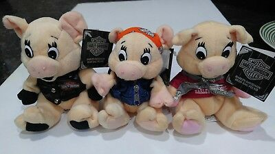 Harley Davidson Beanie Babies Hogs Pigs Set of 3 Pre-Owned NOS New Old Stock d875e41069c