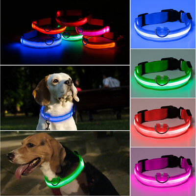 RECHARGEABLE USB LED Dog Pet Light Up Safety Collar Night Glow Adjustable S8Ub