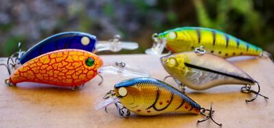 Yellowbelly Fishing Lure Murray Cod Barra Flathead Bass Trout Redfin Perch Bream