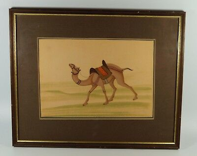 Framed Antique Indian Rajasthan Painting of a Camel on Silk 29x36cm