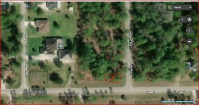 NO RESERVE!! 3607 E 23rd Street,ALVA..Florida Land for Sale.