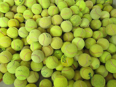 30 Used Tennis Balls-Very Low Price!!!