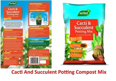 Westland Cacti and Succulent Potting Compost Mix Enriched Seramis 4L x 2 Health