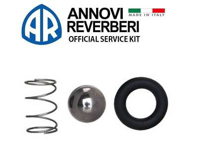 AR CHEMICAL INJECTOR KIT 42125 for Annovi Reverberi RMW RMV Pressure Washer Pump