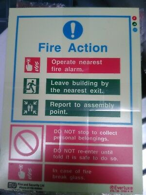 Photo Luminescent General Fire Action Sign Notice Glow In the Dark Rigid Plastic