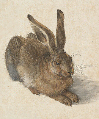 Young Hare after Albrecht Dürer Rabbit Feldhase Animal Oil Painting Hand Painted