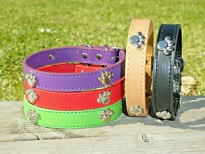 Dog Collar Studded Paw Puppy PU Leather XS Small Medium Pet Black Red Male Girl