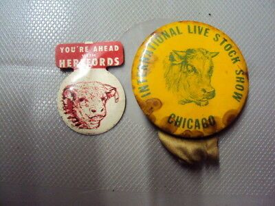 Vintage Union Stock Yards Chicago,ILL & herford stickon 96 yrs old