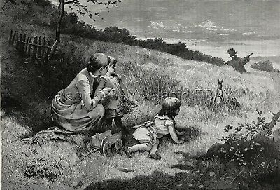 Rabbit & Children Watch Each Other in Field, Charming Large 1880s Antique Print