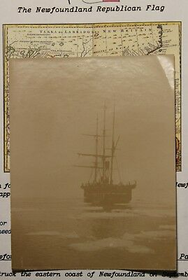 Newfoundland Real Antique Photo Of Sealing Ship Entering Ice In Search Of Seals