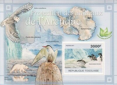 Togo 2011 Protection of Animals in Arctic Block sheet Pinguine