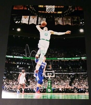 Smart Andrea Bargnani Signed Toronto Raptors 11x14 Photo With Coa Sports Mem, Cards & Fan Shop