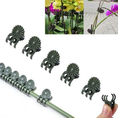 40Pcs Plant Support Daisy Garden Flower Orchid Clips Vines Grow Upright Clip Set
