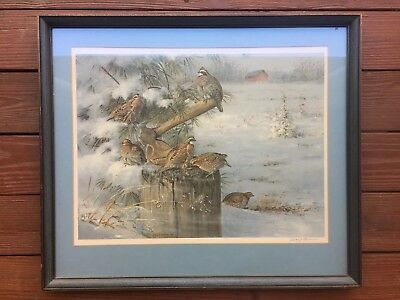 Framed Signed & Numbered Wintering Quail by Owen J. Gromme Limited Edition Print