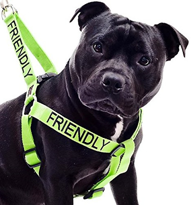 FRIENDLY Known as Friendly to all Green Colour Coded Non Pull Dog Harness By Of