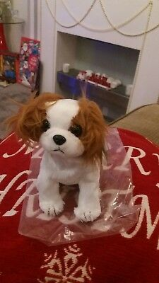 """TY Beanie Babies Cavalier King Charles Spaniel """"Regal"""" With Tags"""