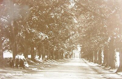 Edwardian Ladies The Lime Avenue Gifford Haddington East Lothian Early Rp Pc