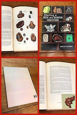 STARTING ROCK & MINERAL COLLECTION Book OLD Middle School Classroom VINTAGE 1961