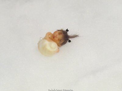 Ooak Polymer Clay Baby Girl Snail! Miniature Fairy Elf Mermaid Fantasy By ~Rae~