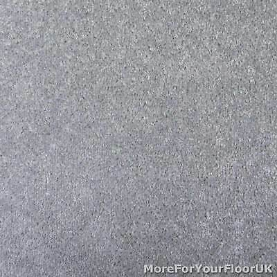 Dove Grey Oxford Quality Twist Carpet Cheap Stain Resistant Felt Backing 4m & 5m