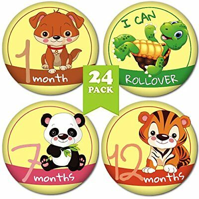 Baby Monthly Stickers 24 Pack Perfect Shower Gift Includes 1St Year Milestones L