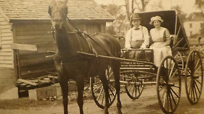 Rppc Postcard  Evansville In  Detail  Horses Carriage, Street View