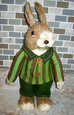 "New Pier 1 Imports Natural Sisal  PETER RABBIT 14""Tall Green Striped Suit"