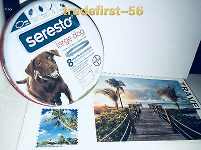 Bayer Seresto Flea and Tick Collar for Large Dogs over18lbs