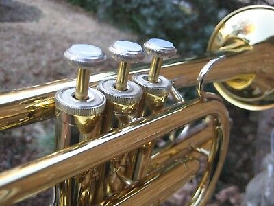 Clean/Lubricated Bach CR300 Cornet 100% Pos Fdbck (Mostly Band Instruments) USA