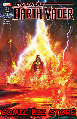Star Wars Darth Vader #25 (2018) 1St Printing Bagged & Boarded Marvel ($4.99)